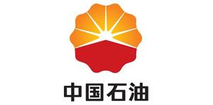 Petro China Co Ltd.